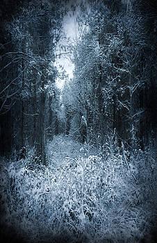 Svetlana Sewell - Dark Place