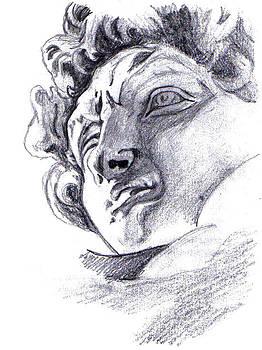 David by Michelangelo by Di Fernandes
