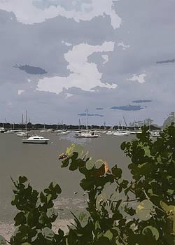 Steve Sperry - Davis Island