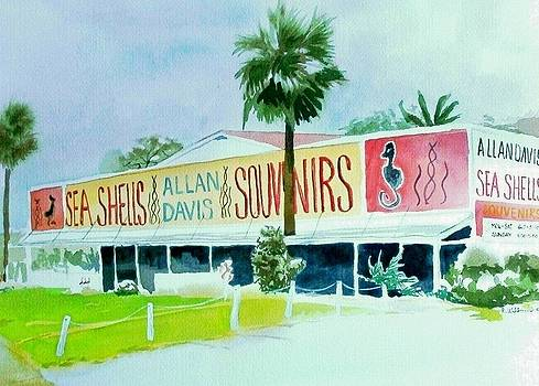 Davis Shell Shop by Richard Willows