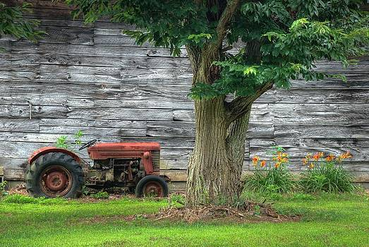 Daylilies Tractor by Cecile Brion