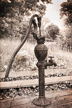 Michelle Wiarda - Days Gone By