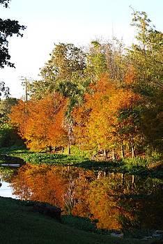 Judy Hall-Folde - December Morn on Deerfield Creek