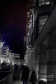 December Walk by Anca Jugarean