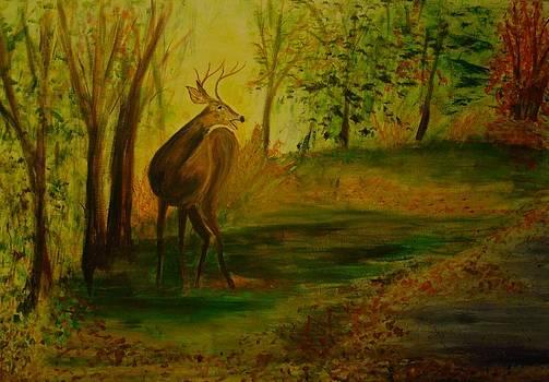 Deer Startled by Carolyn Speer