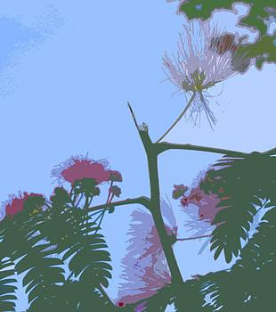 Anne Cameron Cutri - Delcately Botanical