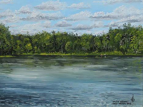 Deleon Springs by Larry Whitler