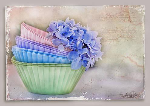 Delight by Sandra Rossouw