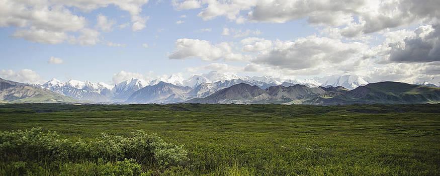Denali Range by Jen Morrison