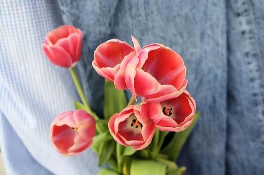Lynnette Johns - Denim and Tulips