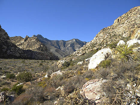 Frank Wilson - Desert And Mountains