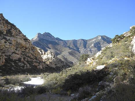 Frank Wilson - Desert Trail