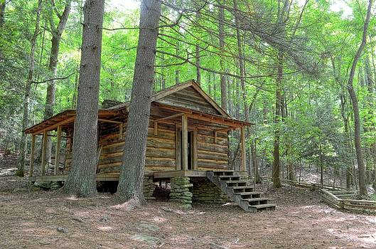 Disharoon Cabin by Bob Jackson