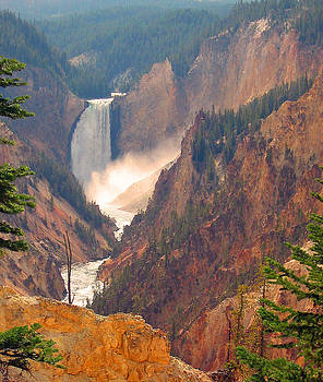 Distant Thunder-Lower Waterfall of Yellowstone by Carol Bruno