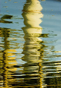 Isaac Silman - Distorted reflection 3