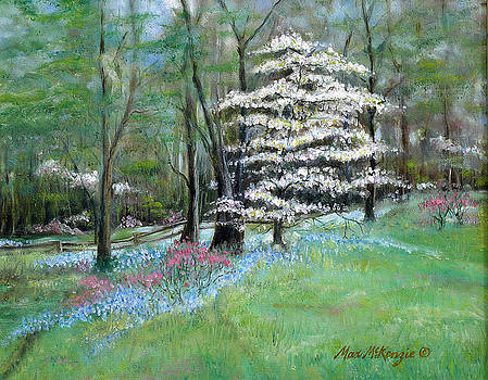 Dogwood In Springtime by Max Mckenzie