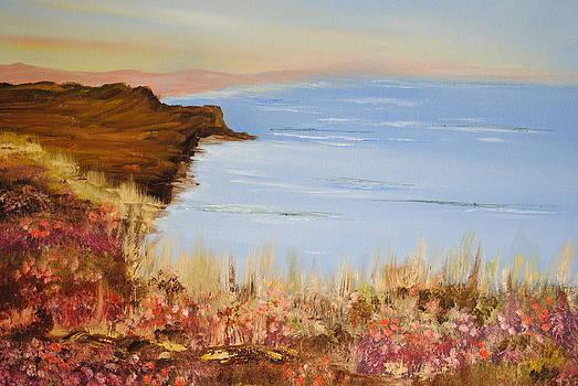 Dorset Coast of England by James Higgins