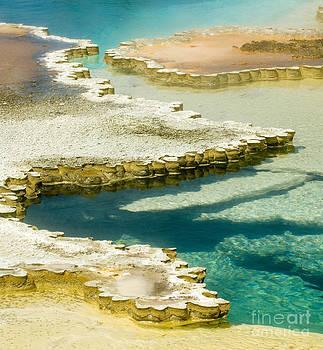 Sandra Bronstein - Doublet Pool in Yellowstone