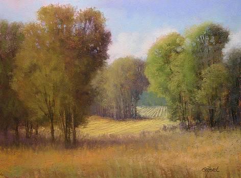 Down on the Farm by Paula Ann Ford