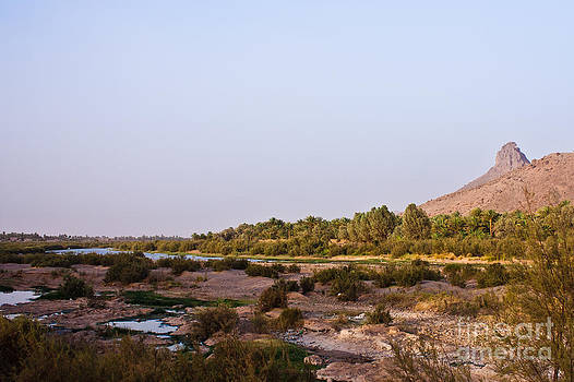 Nabucodonosor Perez - Draa river