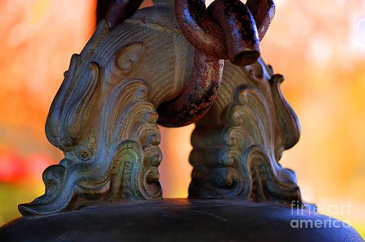 Dragon Heads by Anca Jugarean