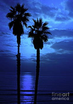 Gwyn Newcombe - Dreamy Sunset