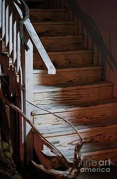 TSC Photography Timothy Cuffe Jr - Driftwood Stairs