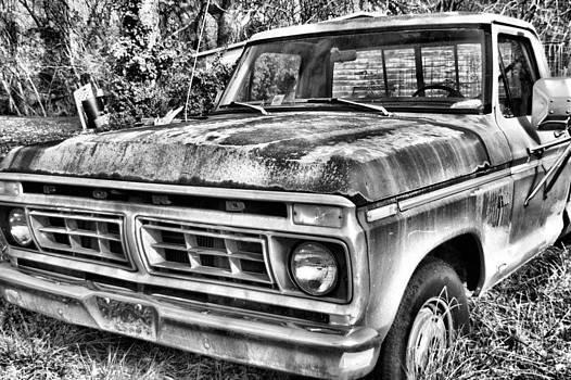 Driven One by Richard Peyton