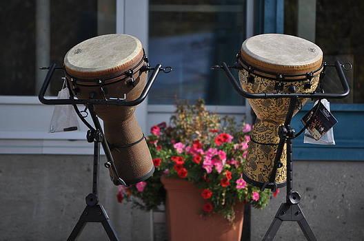 Daryl Macintyre - Drums