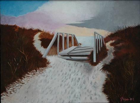 Dune Bridge by Lester Glass