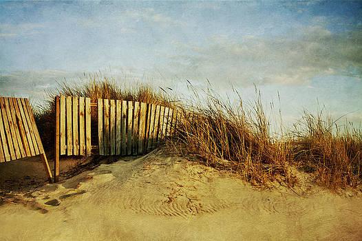 DuneAndFence by Antonio Arcos