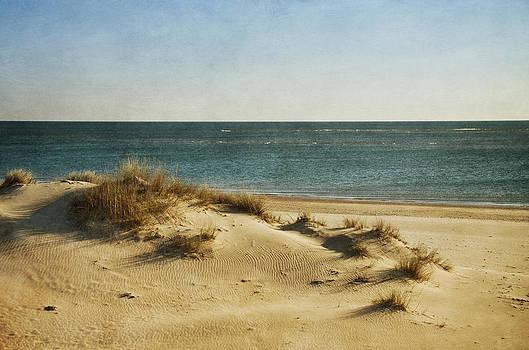 DuneArt. by Antonio Arcos