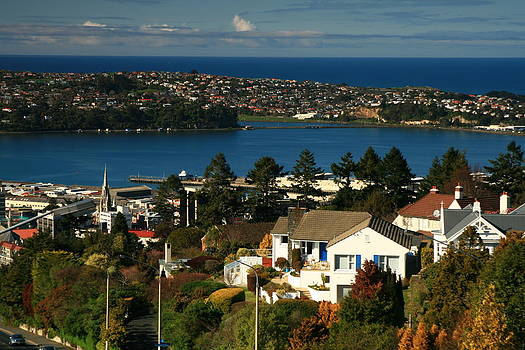 Terry Perham - Dunedin NZ View To Andy Bay
