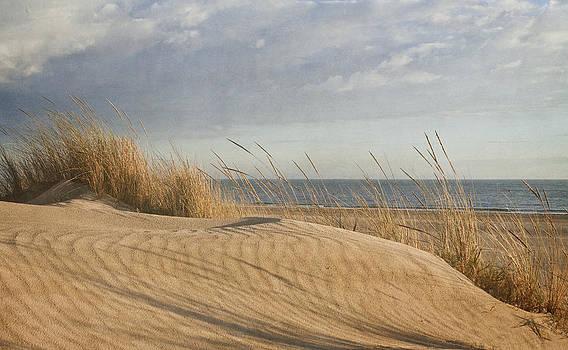 DuneLight by Antonio Arcos