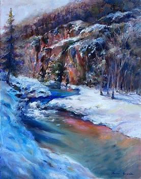 Durango Stream by Bonnie Goedecke