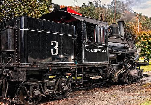 Kathleen K Parker - Durbin Rocket Excursion Train