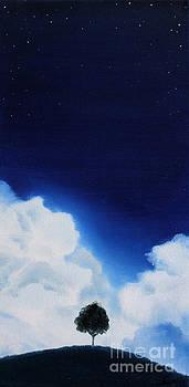 Dusk Day Dawn Series by Seth Corda