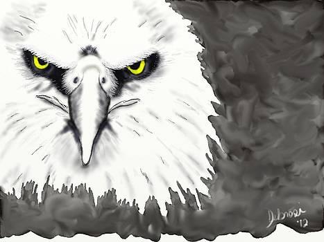 Eagle Face by Deborah Rosier