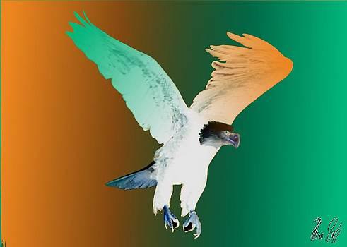 Eagle four by Helmut Rottler