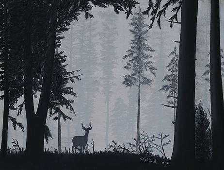 Early morning stroll by Charles Hubbard