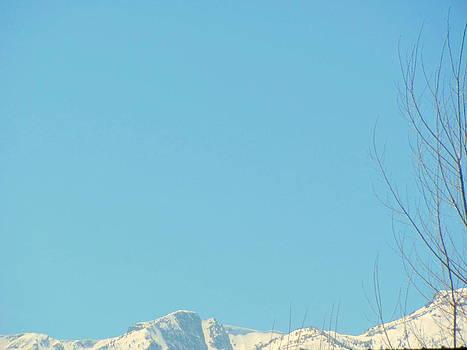 Early Spring Mountain Peekes  by Amy Bradley
