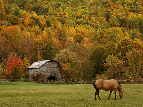 Ease into Autumn by JK York