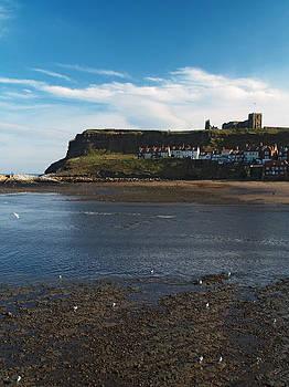 East Cliff by Steve Watson