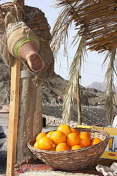 Yvonne Ayoub - Egypt Oranges at the Oasis
