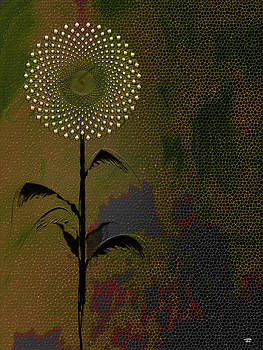 Electric dandelion 2 by Stuart Turnbull
