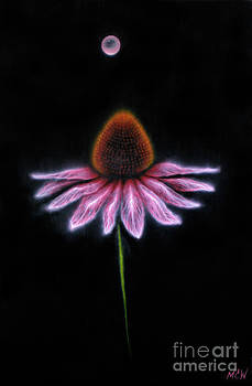 Electric Echinacea by Michelle Cavanaugh-Wilson