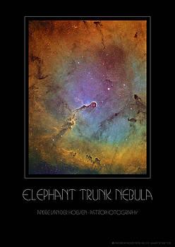 Elephant Trunk Nebula by Andre Van der Hoeven