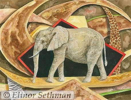 Elephant Walk by Elinor Sethman