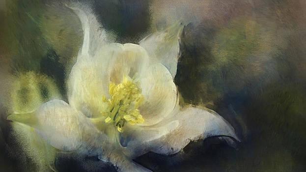 Embers by Andre Sintenie