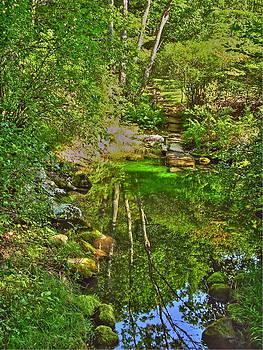 Frank SantAgata - Emerald Pool